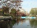 池の中央に橋